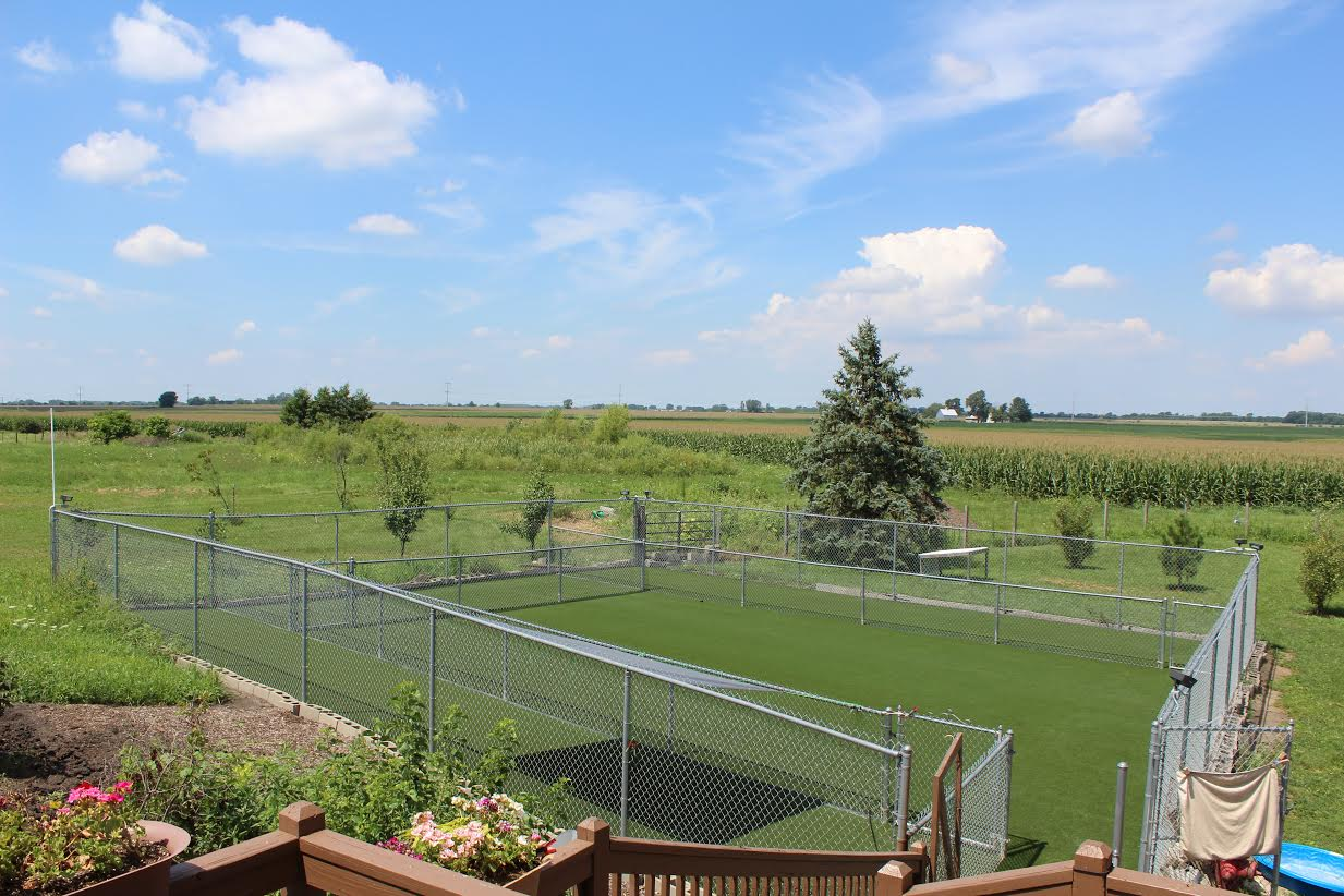 Artificial turf dog park run and training facility in Chicago